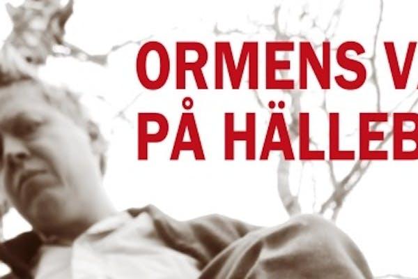 Ormens väg på hälleberget - Jonas Hedlund