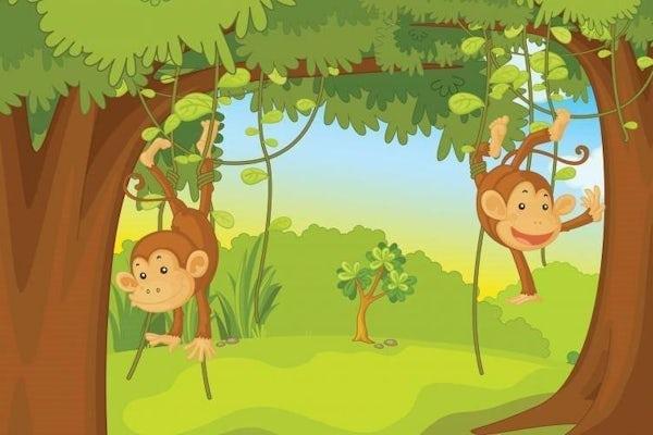 Jungleleg / Weekend for børn