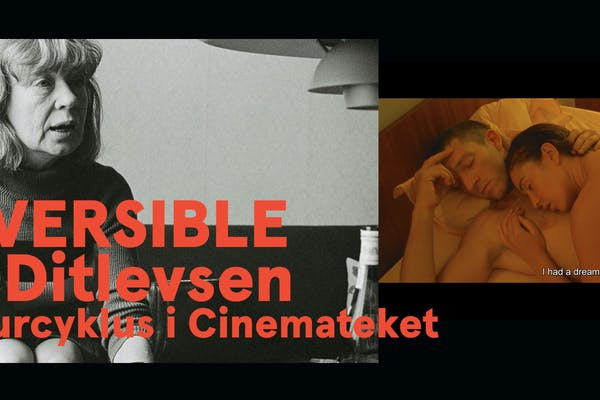 Litteraturcyklus i Cinemateket - Irréversible